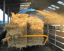 Kidd-farm-machinery-bale-shredder